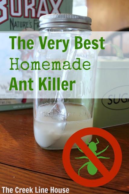 A close up of homemade ant killer