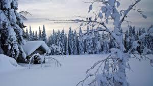 finlandia salah satu negara dengan iklim dan suhu paling dingin di dunia