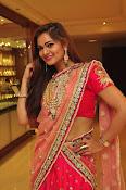 Aswhini latest sizzling half saree pics-thumbnail-14