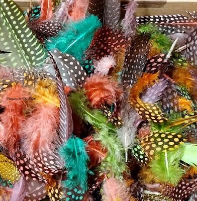dye feathers