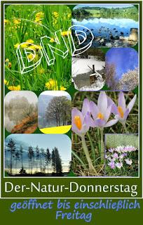 http://kreativ-im-rentnerdasein.blogspot.de/2016/04/der-natur-donnerstag-dnd-16.html