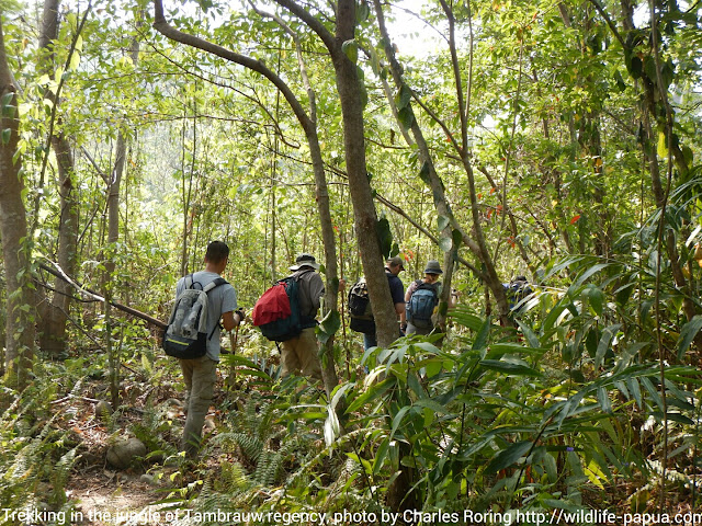 Trekking with tourists from Hongkong and the United States