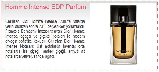 Christian Dior-Homme Intense EDP Erkek Parfüm