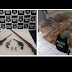 Polícia apreende armas em Papanduva e animais silvestres em Monte Castelo