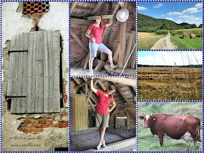 Styl Country zainspirowany na wiosce w Polsce / Bluzka / Szorty DIY Iwakki