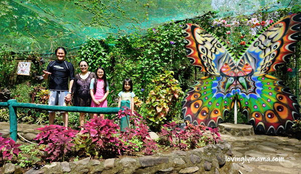 Mambukal Resort overnight stay - Mambukal Mountain Resort - Negros Occidental destination spa - Bacolod mommy blogger - Bacolod blogger - family travel -Mambukal Resort rates - Mambukal Butterfly Garden