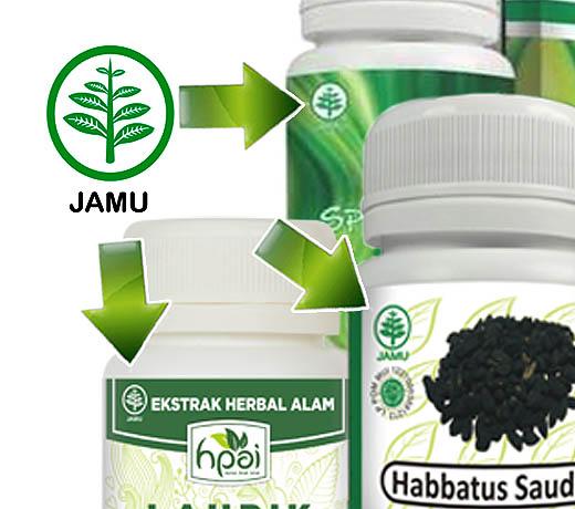Obat asam urat tradisional atau jamu