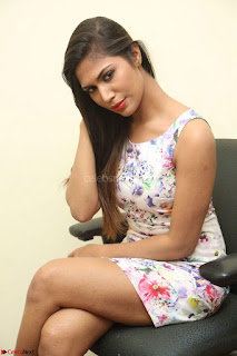 Nishi Ganda stunning cute in Flower Print short dress at Tick Tack Movie Press Meet March 2017 203.JPG