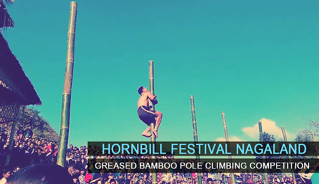 naga-traditional-games-greased-bamboo-pole-climbing-competition-hornbill-festival-nagaland