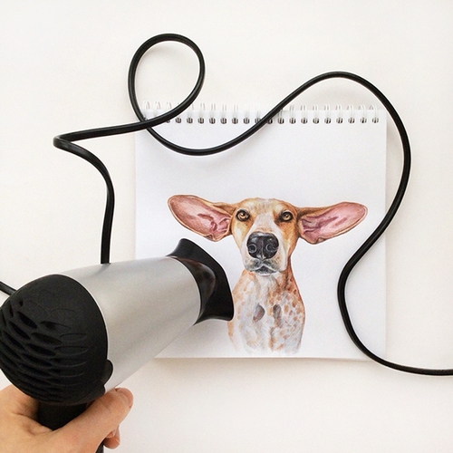 07-Hair dryer Love It-Valerie-Susik-Валерия-Суслопарова-Cats-and-Dogs-Interactive-Animal-Drawings-www-designstack-co
