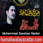 http://www.humaliwalayazadar.com/2016/10/syed-muhammad-zeeshan-haider-nohay-2017.html