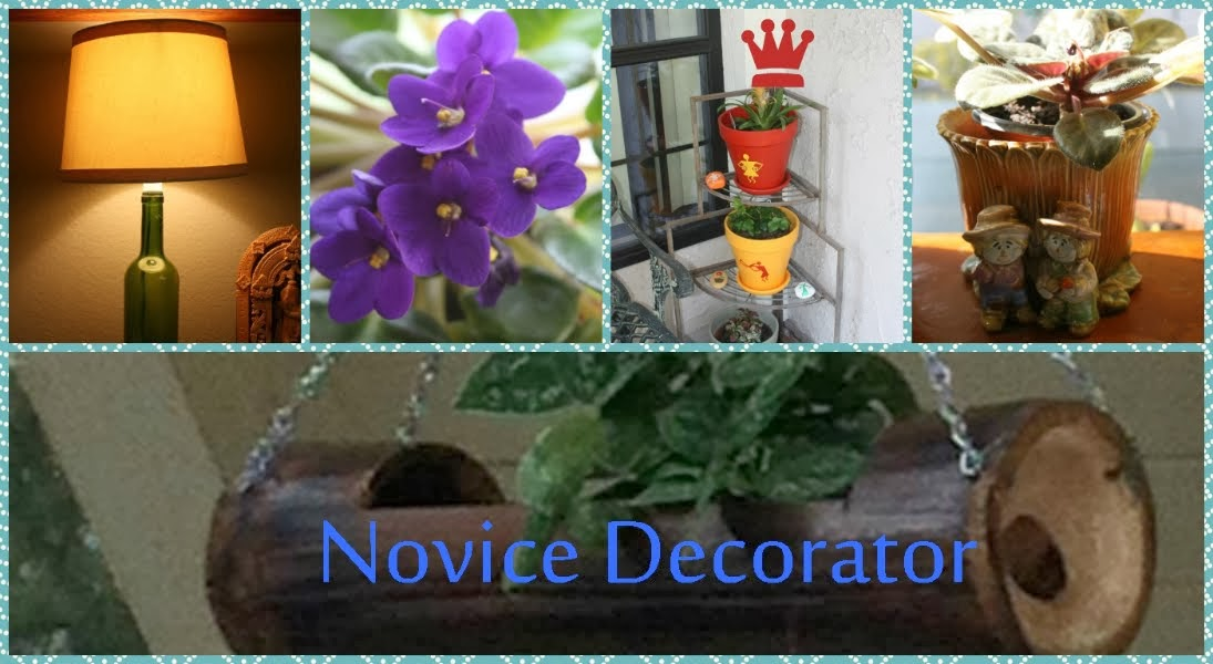 Novice Decorator
