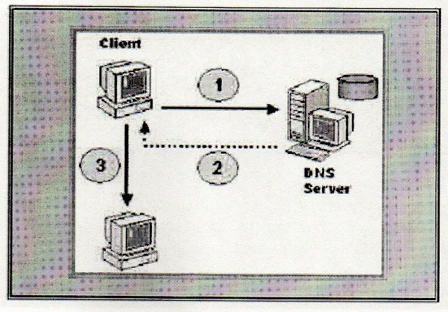 DNS (Domain Name System) Server