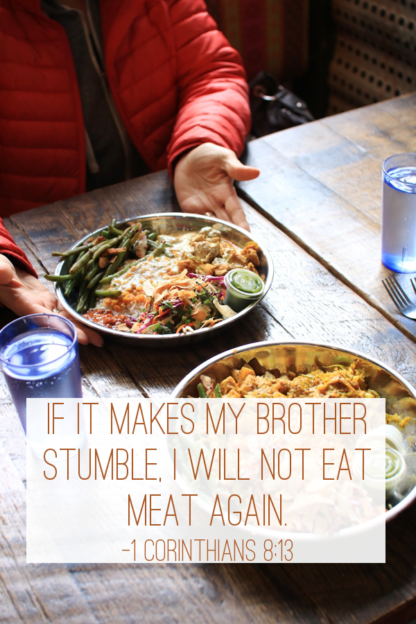 I will not eat what causes my brother or sister to stumble. - 1 Corinthians 8:13 | Land of Honey
