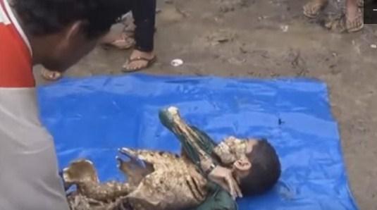 bocah tewas di serang piranha