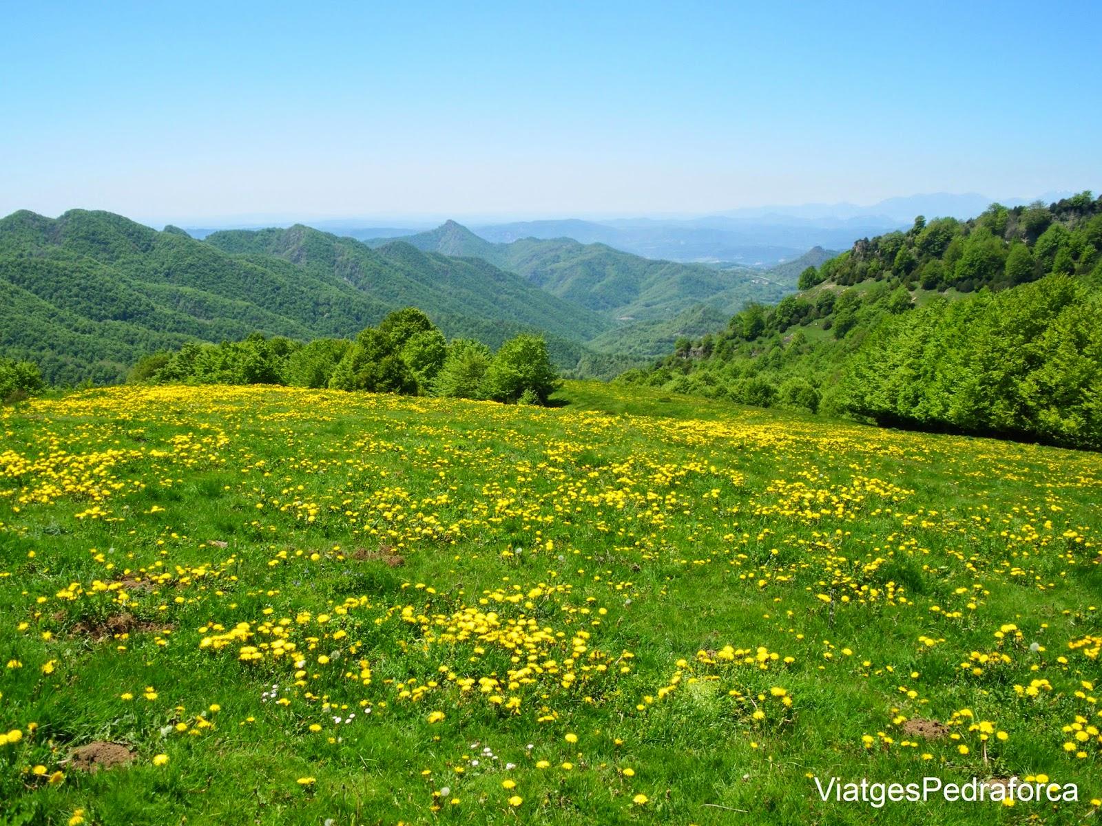 Puigsacalm Garrotxa Riplles muntanya excursio