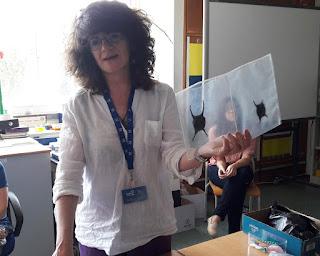 Eugénia tem na mão uma mica onde se vê dentro duas bolsas de ovos de tubarão.