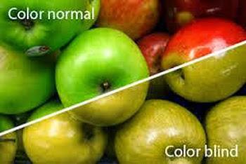 Beza penglihatan yang normal dan mereka yang mempunyai masalah buta warna
