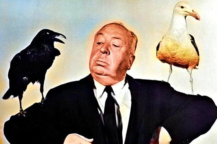 Alfred Hitchcock'un kuşlar yani the birds filmi en çok gişe yapan filmlerinden biriydi.