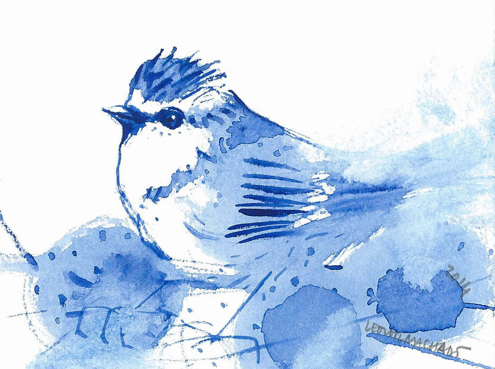 vocÊ viu o passarinho azul jussara neves rezende
