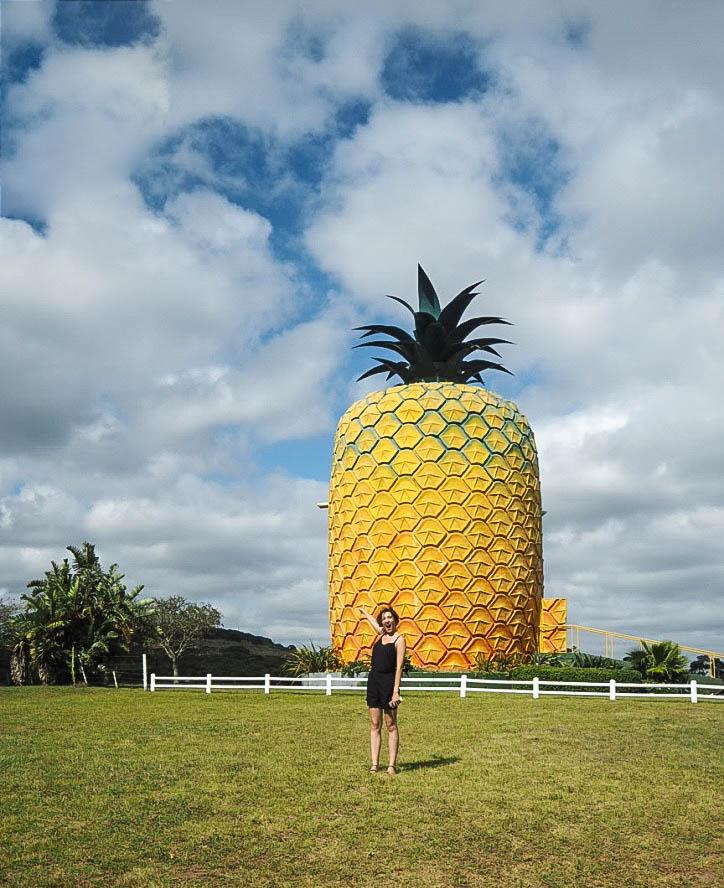 Giant pineapple of Bathurst
