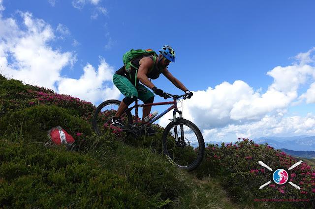 Mountainbike Schule Wildschönau