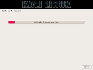 tahap konfigurasi hardware saat instalasi kali linux