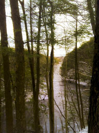 The Saugatuck River, along The Saugatuck Trail, Redding CT