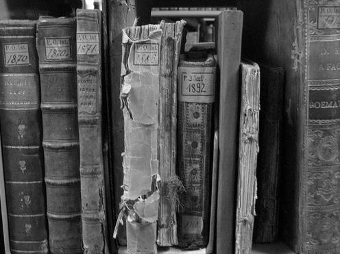 Resultado de imagem para livro velho