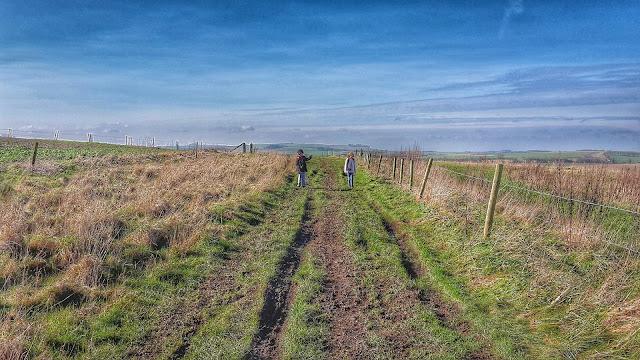 Project 366 2016 day 47 - Walking the Ridgeway // 76sunflowers