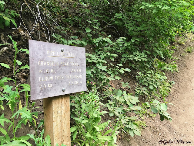 Hiking to Church Fork Peak, Milcreek Canyon