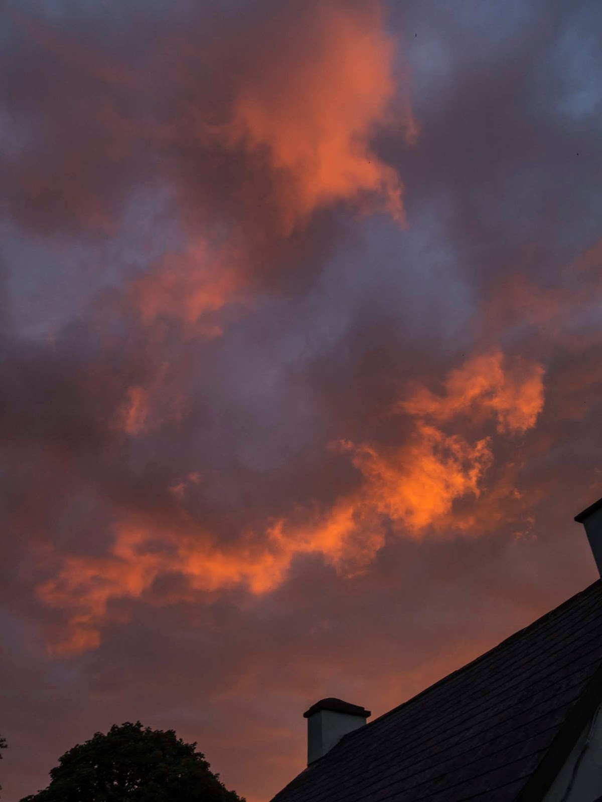 Bright sunset clouds over the roof of a house and a Maple tree top.