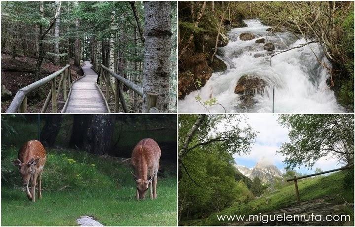 Entrada-PN- Aiguestortes-Lago-San-Mauricio