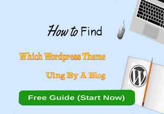 Find Wordpress Theme