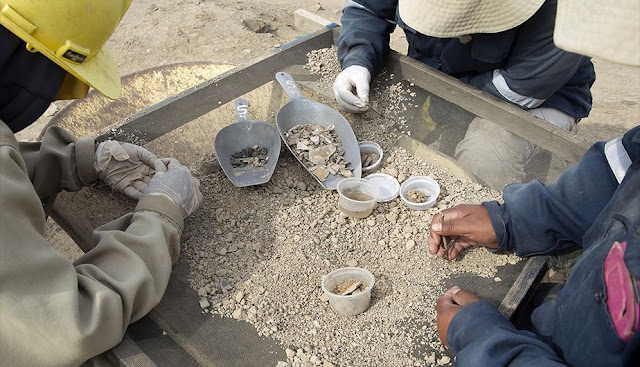 Tiny bone from ancient Peru offers glimpse of great civilization