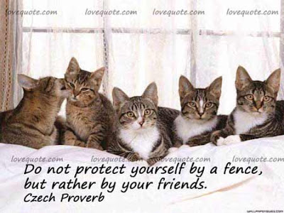 cute-friendship-quotes-for-pictures