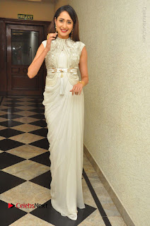 Actress Pragya Jaiswal Stills in Beautiful White Dress at turodu Audio Launch  0048.JPG