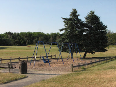 Wing School Swingset