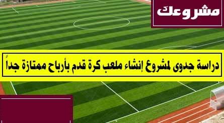 دراسه جدوي فكرة مشروع إنشاء ملعب كرة قدم مصر 2019