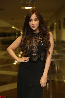 Angela Krislinzki in Transparent Black Gown at Rogue Movie Teaser Launch 1st March 2017 035.JPG