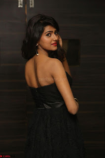 Shalu Chourasiya in spicy Sleeveless Strapless Black Top at O Pilla Nee Valla Movie Audio Launch Feb 2017 046.JPG