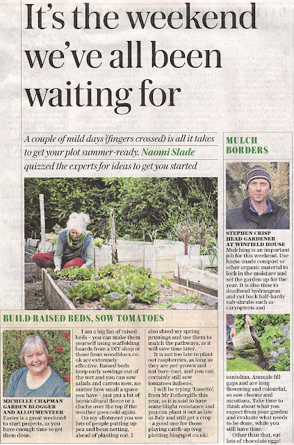 Veg Plotting as seen in The Telegraph