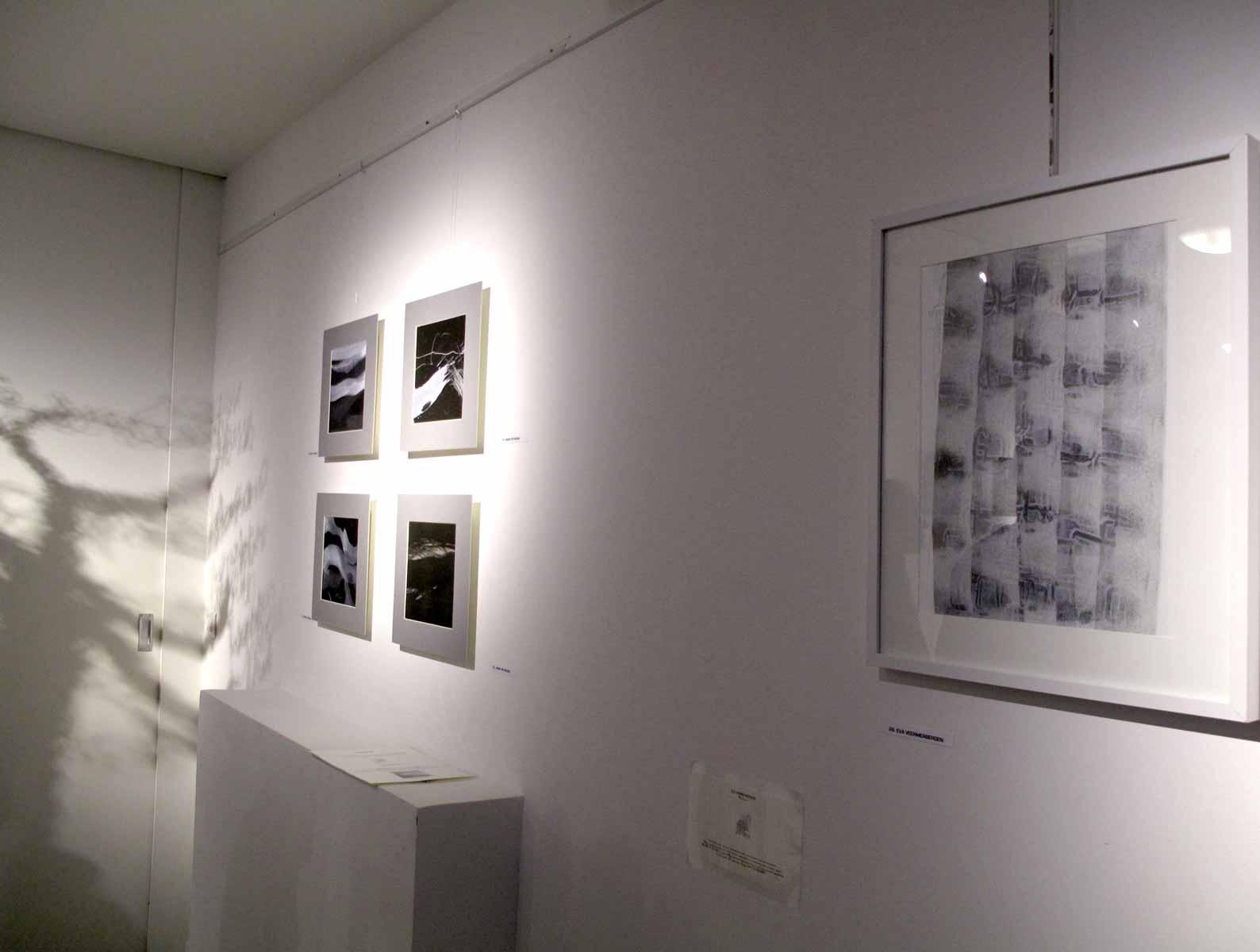 Exposition à l'espace Vaucluse, Avignon 15