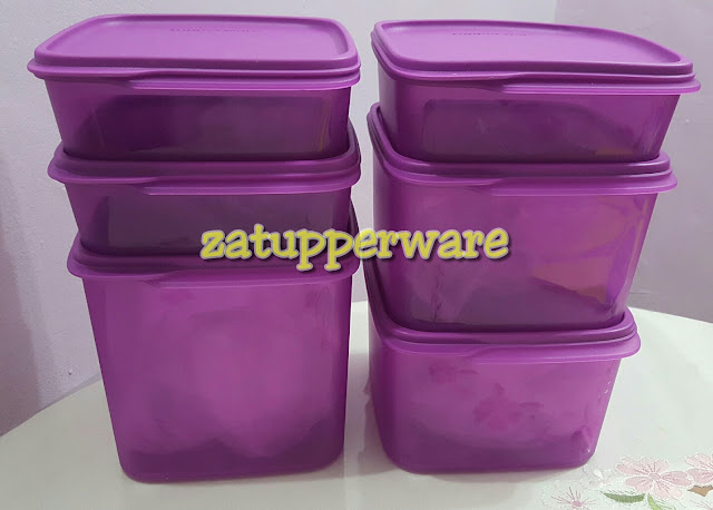 Tupperware Smart Saver Set