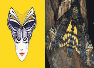 saramago ölüm kelebek