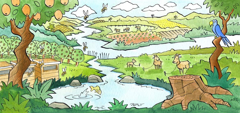 Pengertian Ekosistem Komponen Dan Juga Tipe Tipe Ekosistem