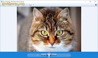 pembuka foto windows 10 yang tidak lelet