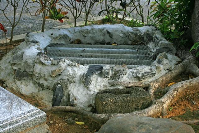 ウェヤガー藍屋井の写真
