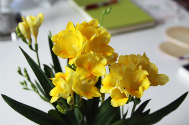 yellow freesias, freesia flowers, spring flowers, yellow flowers, bulbs, Anne Butera, My Giant Strawberry