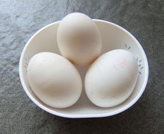 Cara Beternak Ayam Kampung